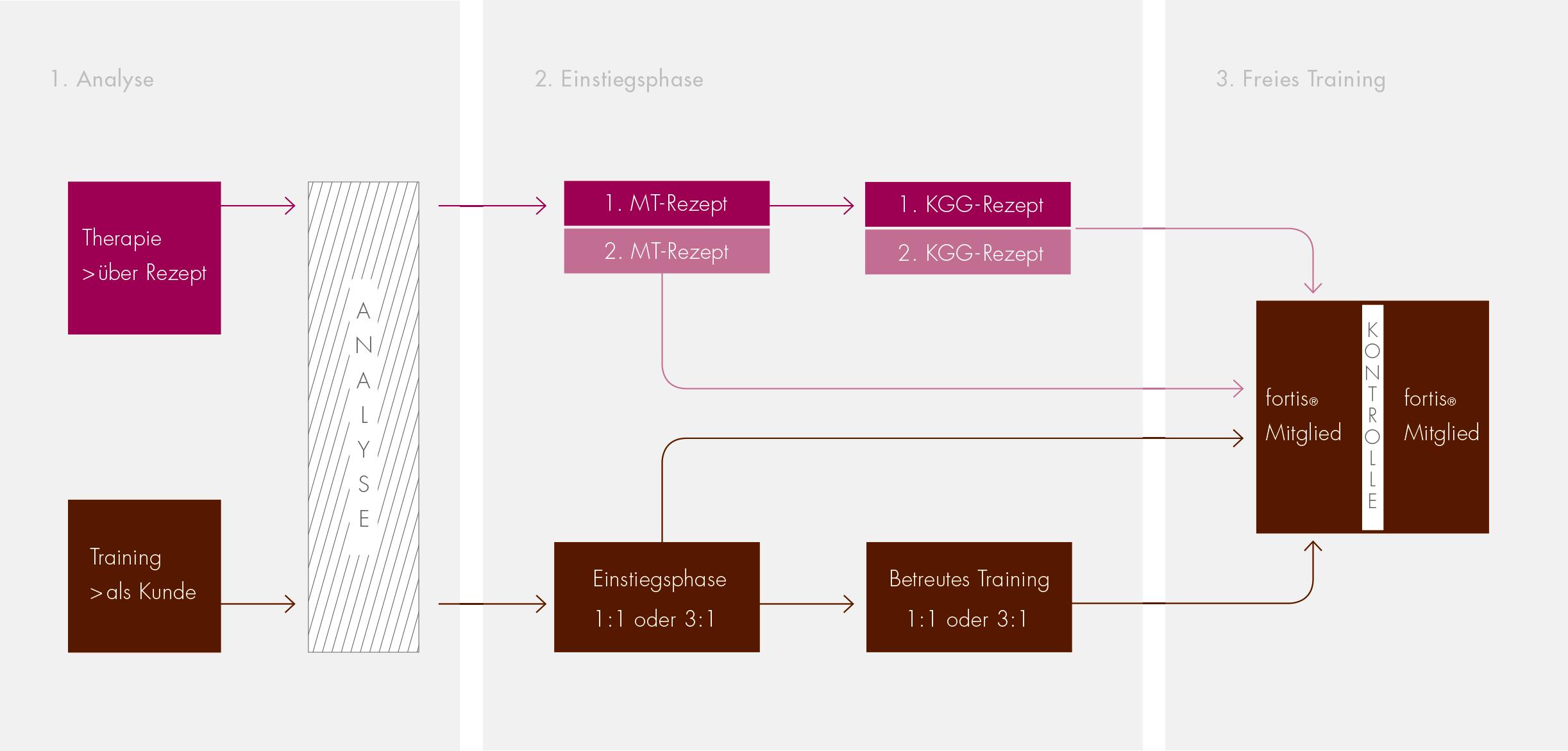 Der-Weg-ins-Training-Schaubild